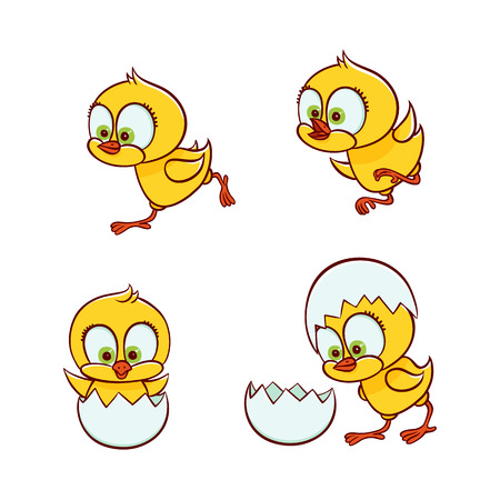 vector flat cute baby chicken small funny chick hatching from egg, learning to fly, running set. Flat bird animal, isolated illustration on a white background, poultry, farm kids design object.