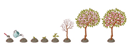 tree planting stages, symbols icon set. green tree apple, pear fruits with foliage, sprouting seedling, shover digging pit, watering can pouring seed, smiling sun. illustration background