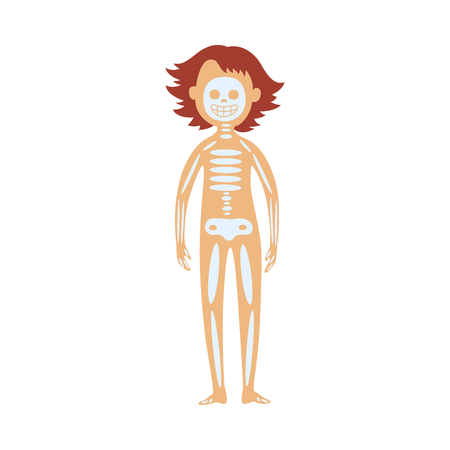 Human skeleton in female body - schematic image of location of of skull, spine and bones. Diagram of internal organs for healthcare and anatomy educational concept, isolated flat vector illustration.