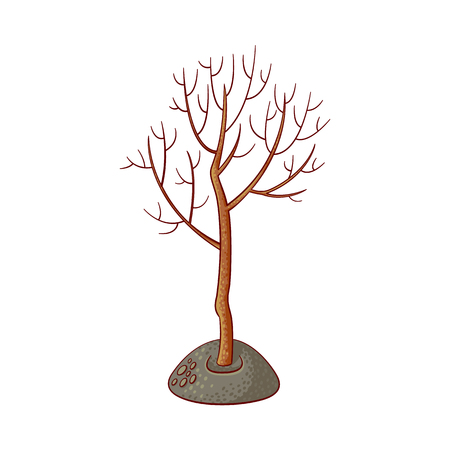 Tree without foliage icon. Isolated vector illustration with forest, garden plant, spring or summer, ecology and environment symbol on white background. Ilustracja