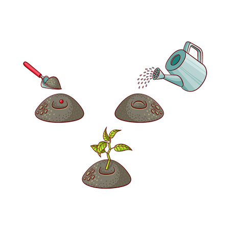 Green sprouting seedling, watering can pouring seed, shovel digging ground for seed. Tree planting stages, symbols icon set. Vector isolated illustration forest, garden plants Иллюстрация