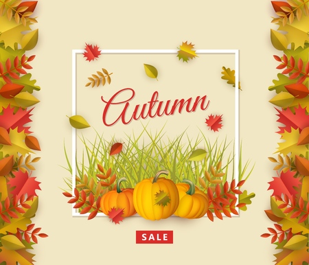 Autumn sale poster template with fall leaves, pumpkins square border frame background with space text. Seasonal advertising poster template with floral maple oak tree orange leaves thanksgiving vector  イラスト・ベクター素材