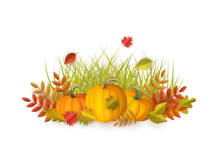 Autumn leaves and pumpkins pattern on isolated background. Seasonal floral maple oak tree orange leaves with gourds for thanksgiving holiday, harvest decoration vector design.