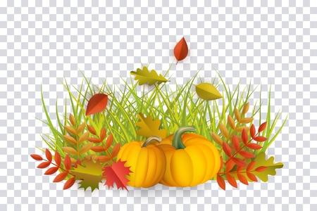 Autumn leaves and pumpkins pattern on transparent background. Seasonal floral maple oak tree orange leaves with gourds for thanksgiving holiday, harvest decoration vector design. 写真素材 - 105228918