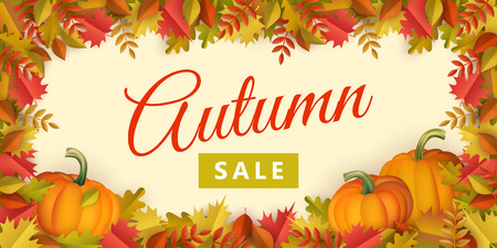 Autumn sale poster template with fall leaves, pumpkins on border frame background with. Seasonal advertising poster template with floral maple oak tree orange leaves thanksgiving vector