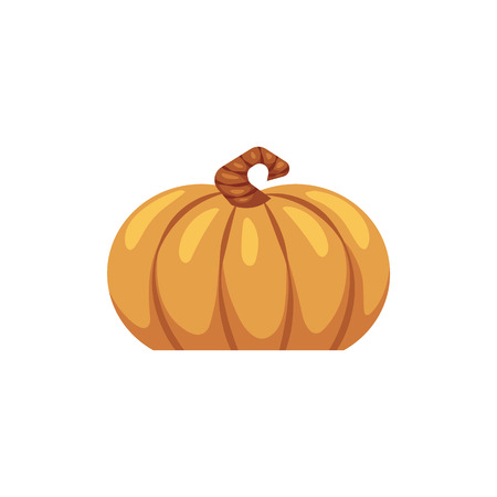 Flat pumpkin icon. Symbol of Thanksgiving, halloween holiday and autumn harvest. Natural organic food nutrition, healthy eating element. Orange gourd, seasonal decoration. Vector illustration  イラスト・ベクター素材