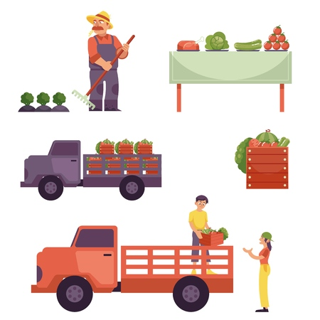 Flat farmer products delivery process from harvest to market. Man in professional uniform - rubber boots, overalls working on crop field, food delivering by truck served at table. Vector illustration Foto de archivo - 106081177
