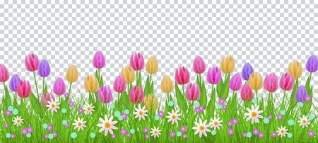 Erba di prato verde, cornice di confine di fiori di tulipano margherita, modello su sfondo trasparente. Modello di vendita primavera estate per poster al dettaglio e design pubblicitario con spazio di testo. Illustrazione vettoriale