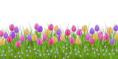 Green meadow grass, tulip bellflower flowers border frame, template on isolated background. Spring summer sale template for retail poster and advertising design wtih text space. Vector illustration Zdjęcie Seryjne - 112090128