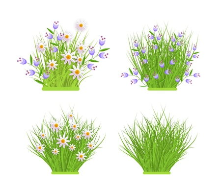 Spring and summer floral bundles of different widths set with fresh white chamomiles and blue wild flowers on green grass. Beautiful seasonal blooms on greenery in isolated vector illustration. Illustration