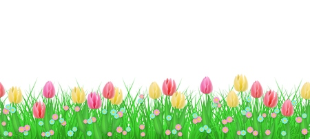 Grünes Wiesengras, Tulpenblumen-Grenzrahmen, Schablone auf lokalisiertem Hintergrund. Frühlings-Sommer-Verkaufsschablone für Einzelhandelsplakat und Werbedesign mit Textraum. Vektorillustration