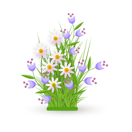 Spring and summer floral bundle with fresh white chamomiles and little blue wild flowers on green grass - beautiful seasonal blooms on greenery in isolated vector illustration. Ilustração