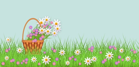 Wicker basket with diasy flowers in green meadow grass with chamomile flowers background. Spring summer sale template for poster and advertising design wtih text space. Vector illustration Illustration