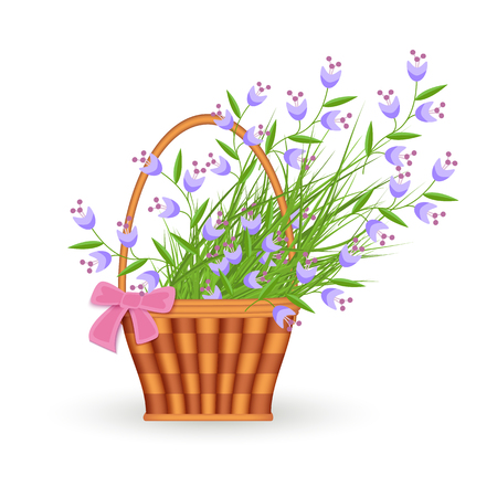 Blue little wild flowers in wicker basket with pink bow isolated on white background - flat vector illustration of spring or summer floral composition for seasonal design. Illustration