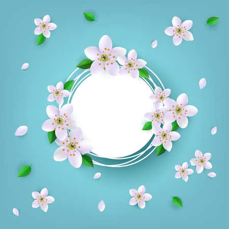 Floral badge with white apple or cherry blossoms and green leaves around empty label with copy space - isolated vector illustration of beautiful spring flowers for greeting or promotion card.