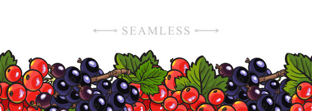 Sketch garden berries, leaves seamless border frame background. Blackberry and red currant . Fresh juicy sweet food, Symbol of healthy lifestyle dieting vector Illusztráció