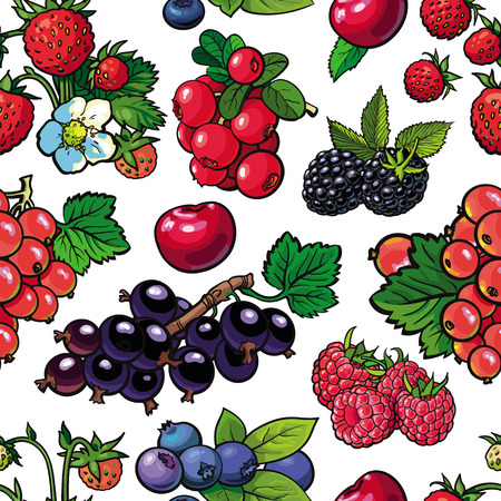Sketch garden berries, leaves and flowers seamless pattern. Gooseberry, blackberry currant strawberry and raspberry. Fresh juicy sweet food, Symbol of healthy lifestyle dieting, vector illustration