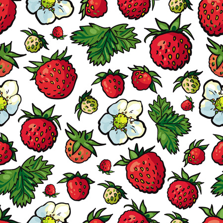 Sketch wild strawberry seamless pattern. Flowers with leaves, green unripe berries, big red ripe. Hand drawn fresh juicy sweet food full of vitamins. Textile, fabric design vector illustration Illustration