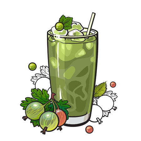 Gooseberry smoothie in sketch style isolated on white background. Cool drink with blended fresh ripe green berries and ice in glass - vitamin beverage with fruits in vector illustration.