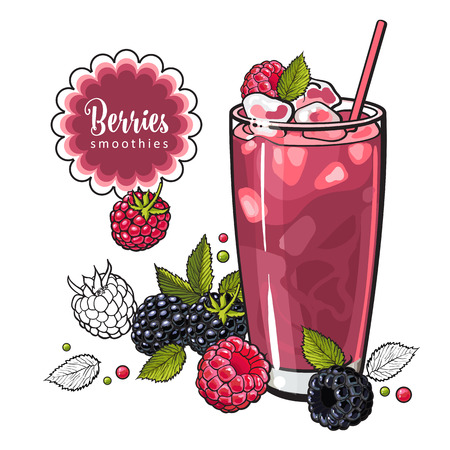 Raspberry and blackberry summer cool drink with fresh ripe fruits and ice in sketch style isolated on white background - hand drawn refreshing juice beverage with berries in vector illustration.