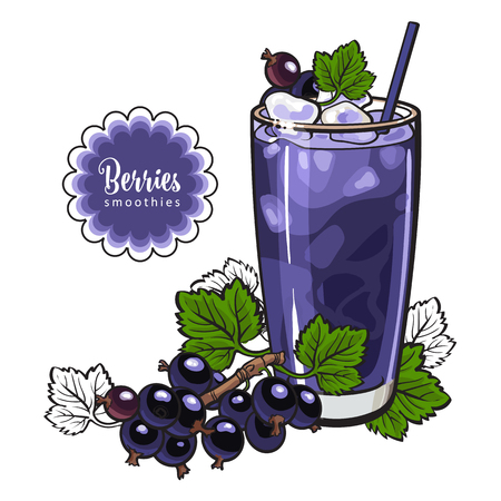 Black currant smoothie - summer cool drink with blended fresh ripe fruits and ice in glass in sketch style isolated on white background. Healthy beverage with berries in vector illustration.