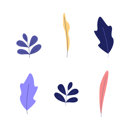Plant leaves set - decorative natural and floral elements of colorful trees and flowers foliage isolated on white background for design in flat style in vector illustration. Ilustracja
