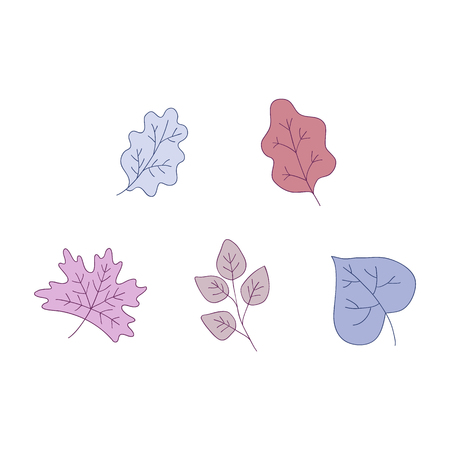 Plant leaves vector illustration set - decorative colorful elements of trees foliage isolated on white background for floral natural design in sketch style. Hand drawn botanical objects.