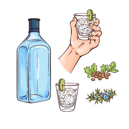 Vector illustration set of gin and tonic cocktail with blue bottle of alcohol drink and mixed beverage in glass with ice cubes and lime slice with ingredients in sketch style isolated on white.