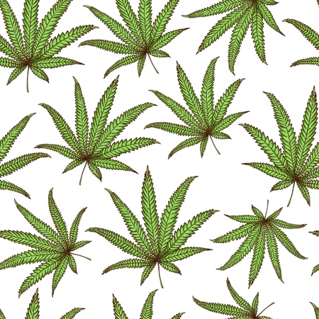 Vector cannabis leaves seamless pattern. Green hemp plant, ligalized smoking drug symbol, marijuana herb, can be used in medical design background. Isolated illustration Illustration