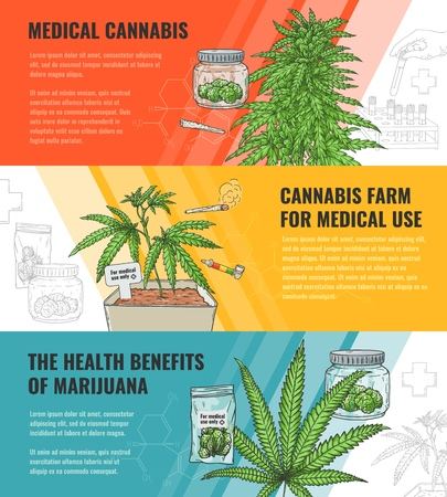 Vector illustration set of medical use and legalization of marijuana horizontal banners with hand drawn cannabis plant and leaf - concept of use in medicine and legal growth of sativa. 向量圖像