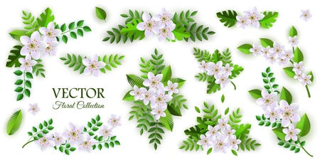 Floral compositions vector illustration set with various branches and bouquets of white apple or cherry flowers and green leaves in flat style isolated on white background for romantic natural design.