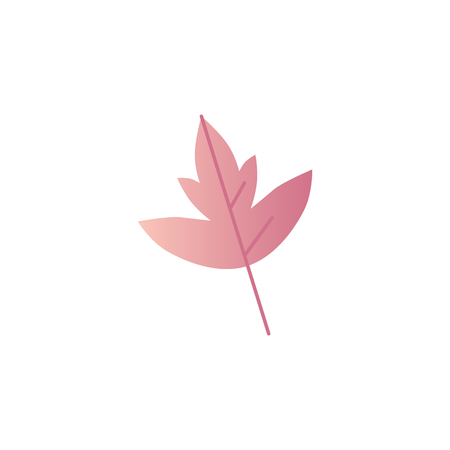 Autumn leaf vector illustration - fall tree foliage in flat gradient style isolated on white background. Bright colorful natural decorative element for seasonal floral design.