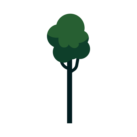 Vector abstract tree with majestic green foliage canopy. Natural element for game landscape design. Forest plant flat icon. Symbol of ecology and environment. Isolated illustration Çizim