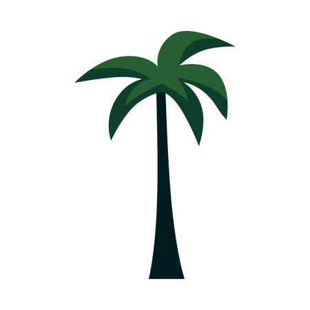 Vector palm tree flat icon. Tropical plant for summer party decoration design. Exotic tree for hot weather landscape design for gameplay design. Isolated illustration