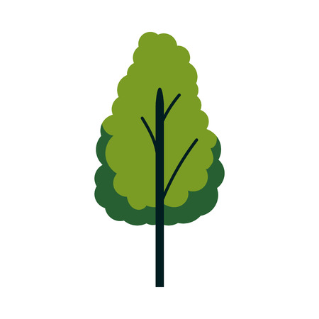 Vector abstract tree with majestic green foliage canopy. Natural element for game landscape design. Forest plant flat icon. Symbol of ecology and environment. Isolated illustration  イラスト・ベクター素材