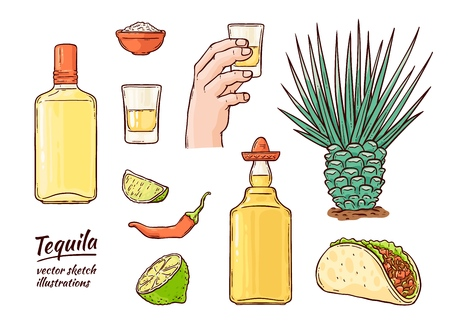 Vector tequila mexican symbols set. Glass bottle of alcohol drink, hand holding shot, line, cactus chili pepper and salt. Mexican traditional drink for party. Isolated illustration 向量圖像