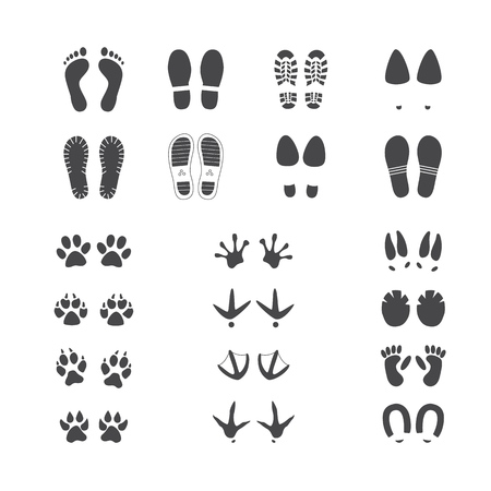 Vector illustration set of different foot and paw tracks of people, wild and domestic animals and birds isolated on white background - monochrome silhouettes of various footprints.