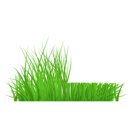 Vector green grass cut border for summer landscape design. Natural decoration element for parks, gardens or rural fields scenery. Lawn or plants object. Isolated illustration