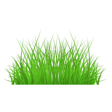 Vector green grass bush, border for summer landscape design. Natural decoration element for parks, gardens or rural fields scenery. Lawn or plants object. Isolated illustration