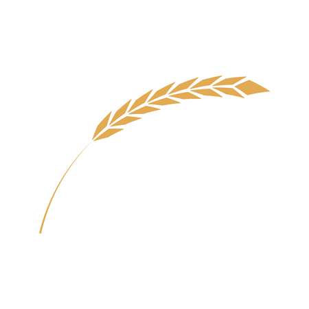 Cereal ear simple icon in flat style isolated on white background - ripe yellow wheat spike. Vector illustration of grain plant - element for bakery, organic farming food or beer design. 스톡 콘텐츠 - 126714083
