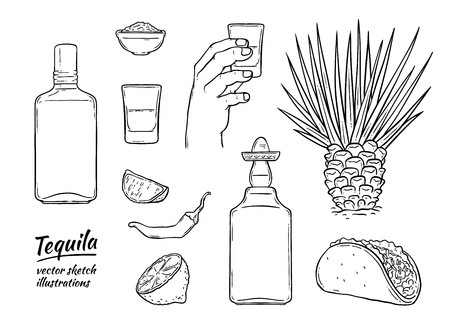 Vector tequila mexican symbols monochrome set. Glass bottle of alcohol drink, hand holding shot, line, cactus chili pepper and salt. Mexican traditional drink for party. Isolated illustration
