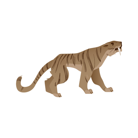 Vector saber-toothed tiger with big fangs roaring. Prehistoric wild cat with furious expression. Cartoon stone age animal icon. Ancient feline predator, isolated illustration Ilustrace