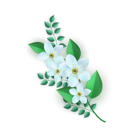 Vector illustration of floral composition in flat style - branch of white cherry or apple flowers with green leaves isolated on white background. Beautiful element for romantic natural design.