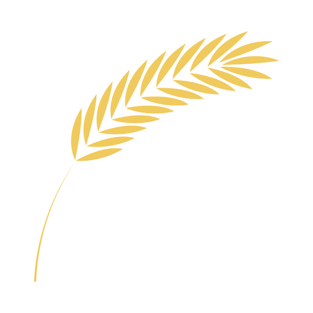 Cereal ear simple icon in flat style for bakery, organic farming food or beer design - vector illustration of ripe yellow agricultural seed of grain plant isolated on white background.