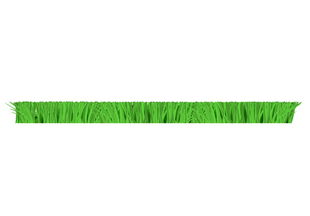 Vector green grass cut horizontal border for summer landscape design. Natural decoration element for parks, gardens or rural fields scenery. Lawn or plants object. Isolated illustration Illustration