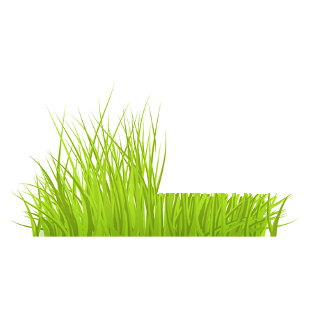 Vector green grass cut border for summer landscape design. Natural decoration element for parks, gardens or rural fields scenery. Lawn or plants object. Isolated illustration 向量圖像