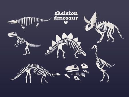 Vector tyrannosaurus, diplodocus, triceratops dinosaur fossil skeleton set. Prehistoric predator, jurrasic giant animal icon. Paleontologu and archeology artifact. T-rex monster white silhouette. Illustration