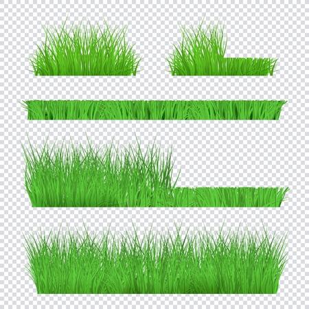 Grande estate, set primaverile di erba verde e bordi del prato su sfondo trasparente in stile realistico. Erba prima e dopo la falciatura, illustrazione vettoriale. Sfondi prato, bordi prato. Vettoriali