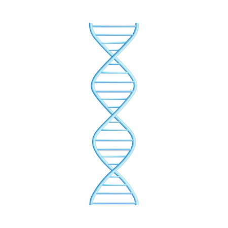 Vector DNA molecule, structure with chromosomes. Helix spiral with genetic code. Molecular biology andgenetic engineering studies concept. Biotechnology and genes science, education design element Ilustração Vetorial