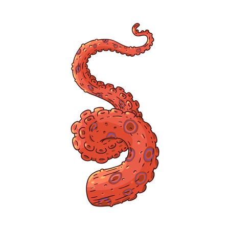 Ocopus di vettore, icona di schizzo tentacolo di calamari. Mano curva animale invertebrato subacqueo rosso. Simbolo di delicatezza di pesce per ristorante di cucina marina, design di menu bar. Illustrazione isolata